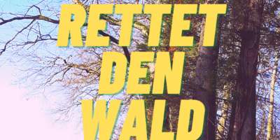 Alternativen zu radikalen Baumfällungen um dem Brudergarten
